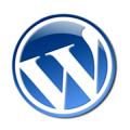 wordpress-hata-kategori-guncellenmedi